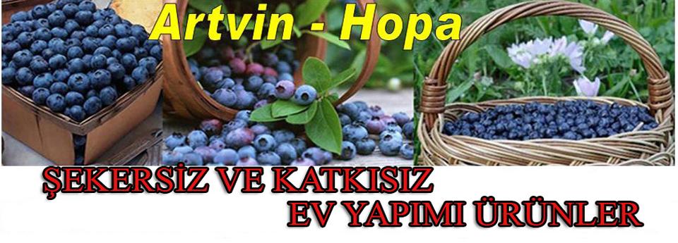 Ürünlerimiz ARTVİN-HOPA'daki BAHÇELERİMİZDE yetiştirilmektedir...